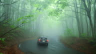 Car on the Road through forest in fog.