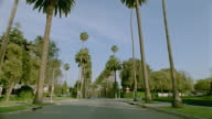 Car point of view driving on street lined by palm trees in Beverly Hills / Los Angeles, California