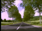 Car point of view on country road lined with trees / France