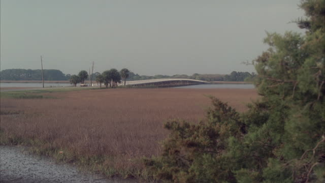 LA Car traveling over a bridge spanning marshlands and river / Tybee Island, Georgia, United States