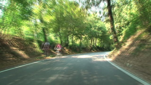 Car travelling along Italian tree-lined country roads