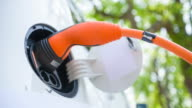 Caring for the environment and driving an electric car