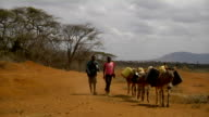 carrying water gallons Boy and girl head home with donkeys on July 28 2011 in Road from Garisa to Dadaab Kenya