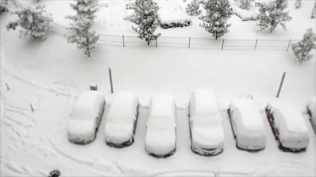 Cars covered in snow and snowing