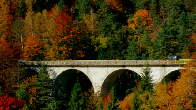Cars moving on arch bridge through autumn forest