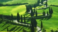 WS HA Cars on tree lined winding road crossing green fields, Val d'Orcia near Pienza, Tuscany, Italy