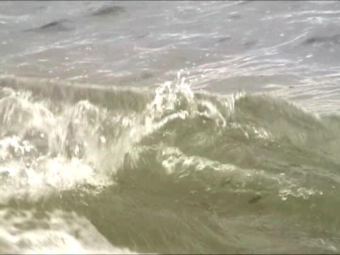Castaway help message in bottle floating at sea