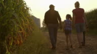 Caucasian family examining corn crop at dusk