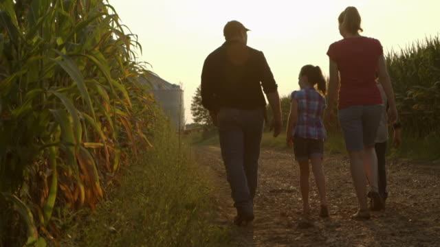 Caucasian family examining corn crop at dusk