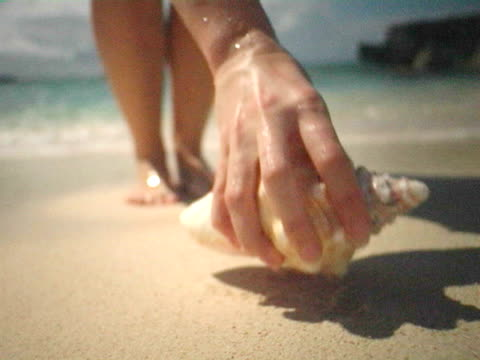 CU, SELECTIVE FOCUS, Cayman Islands, Grand Cayman, Smiths Cove, Woman picking up conch shell on beach, low section
