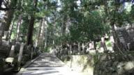 WS Cemetery on sacred in mountain / Kouya, Wakayama, Japan