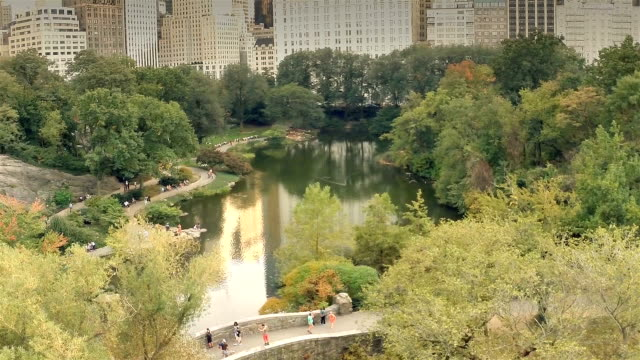 Central park in NYC from above