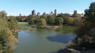 Central Park NYC - Great Lawn, NYC Skyline, Fall Foliage