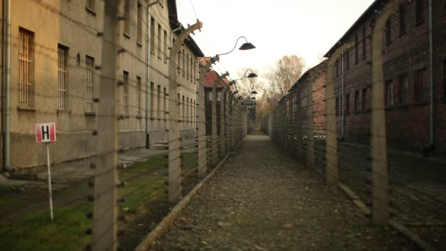 Ceremonies marking the 70th anniversary of the liberation of the camp by Soviet soldiers are due to take place on January 27 2015 Auschwitz was a...