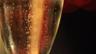 Champagne or beer close up