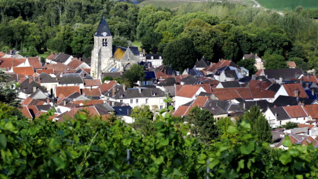 Champagne vineyards and the village of Avenay-Val-d'Or, Marne, France