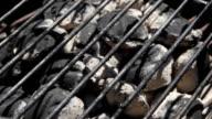 Charcoal Briquettes Rack Focus