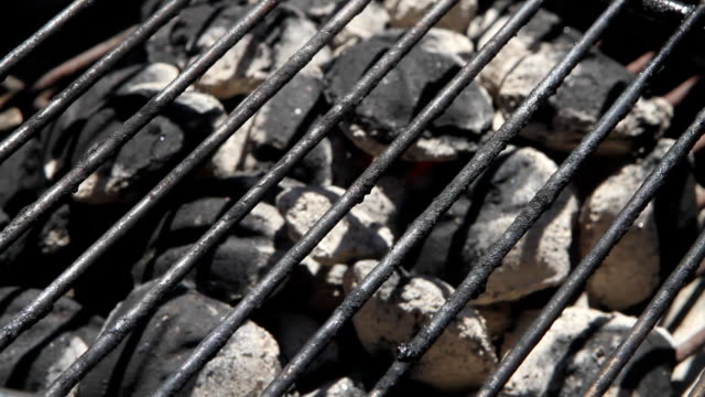 Charcoal Briquettes Rack Focus