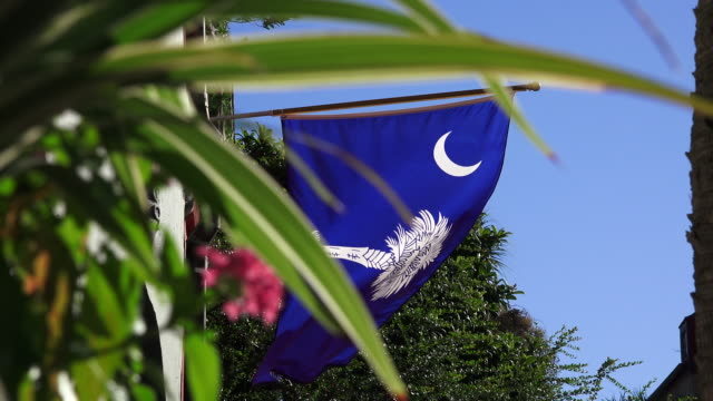 Charleston, SC - South Carolina Flag Waiving