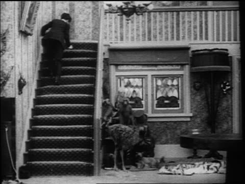Charlie Chaplin stumbling up stairs rolling himself in rug while falling down stairs