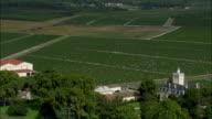 AERIAL, Chateau Larose-Trintaudon vineyard, Bordeaux, Aquitaine, France