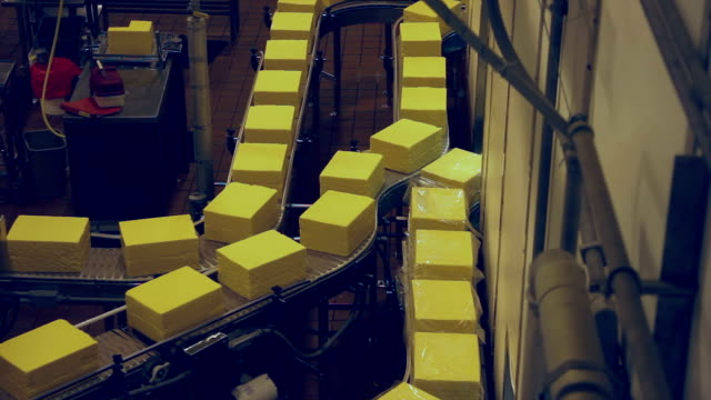 Cheese Production Line - Product On Conveyor