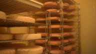 Cheese wheels in dairy farm