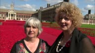 Chelsea Flower Show 2016 Display of handmade poppies at Royal Hospital Chelsea Lynn Berry interview SOT Crocheted poppies Margaret Knight interview...