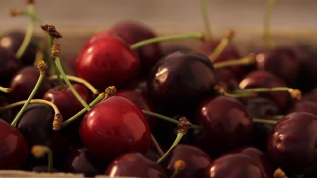 CU PAN Cherries / London, United Kingdom