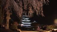 Cherry blossoms and Matsumoto Castle