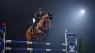 SLO MO Chestnut horse and rider jumping over rail
