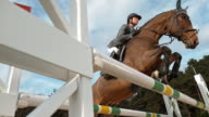 SLO MO Chestnut horse jumping an oxer in sunshine