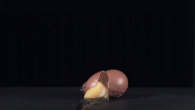Chicken Egg falling and Breaking against Black background, Slow motion, Reverse motion