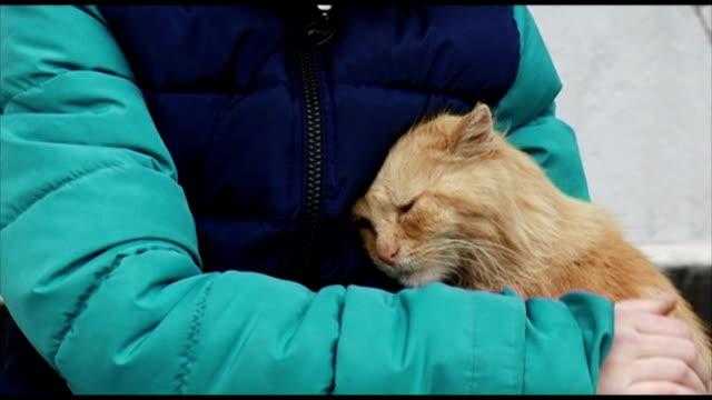 child comforting the unfortunate cat