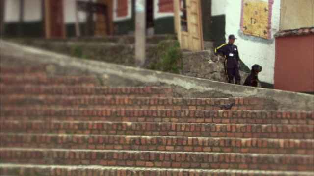 LA WS Child cycling past pigeon on steps near security guard and dog in background / Bogota, Colombia
