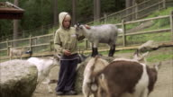 Children and goats at the zoo Sweden.