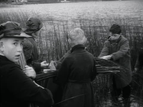 Children gather reeds from the shoreline of Lake Windermere for the annual Rushbearing festival