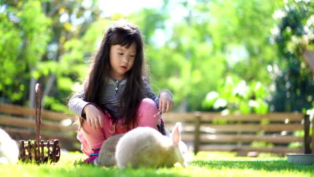 Children girl feed her little rabbit