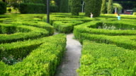 Children play in the maze