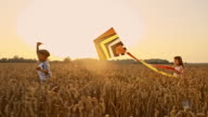 SLO MO Children playing with kite in wheat field