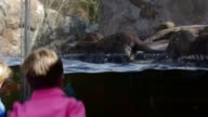 PAN Children watch as Asian smallclawed otters play in their enclosure at the National Zoo Washington DC February 20 2014