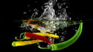 SLOW MOTION: Chili Pepper Splashing into Water