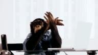 Chimp Laptop Excited
