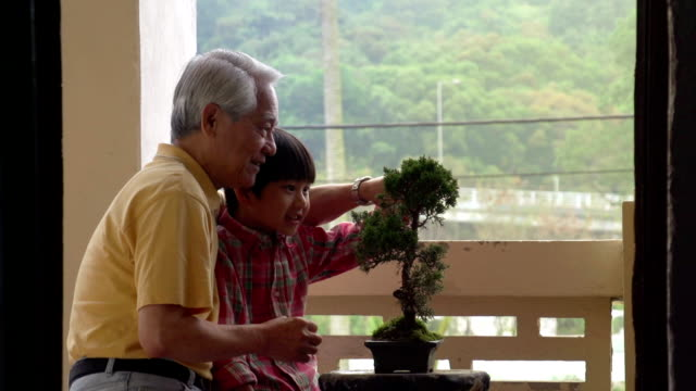 Chinese Generation Banzai Slow Motion