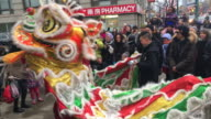 Chinese New Year also known as the 'Spring Festival' is an important Chinese festival celebrated at the turn of the traditional lunisolar Chinese...