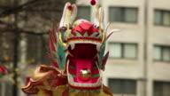 Chinese New Year Dragon - HD & PAL