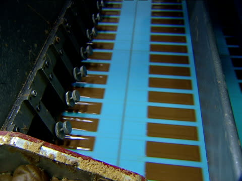 Chocolate bars are made on automated production line conveyer belt