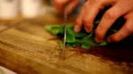 chopping spinach