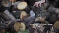 HD: Hacken Holz