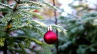 Weihnachtskugel in der Natur